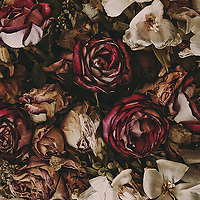 Dried flowers with roses