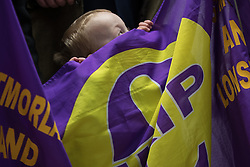 © Licensed to London News Pictures . 27/01/2017 . Copeland , UK . Three-year-old DAVID WALKER from Ambleside peeks over the top of a UKIP flag during a visit by Paul Nuttall and candidate Fiona Mills with deputy leader Peter Whittle AM at  the constituency of Copeland to launch the party's by-election office .  The seat became vacant after sitting MP Jamie Reed resigned . Photo credit : Joel Goodman/LNP