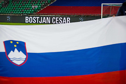 Slovenian flag, Bostjan Cesar during friendly football match between National teams of Slovenia and Belarus, on March 27, 2018 in SRC Stozice, Ljubljana, Slovenia. Photo by Vid Ponikvar / Sportida