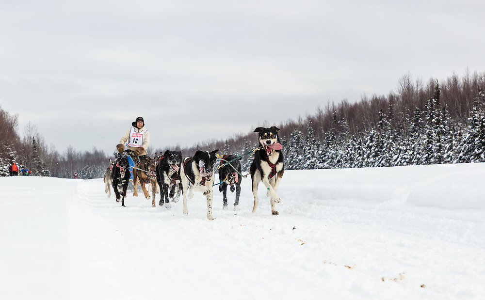 Musher Marvin Kokrine competing in the Fur Rendezvous World Sled Dog Championships at Campbell Airstrip in Anchorage in Southcentral Alaska. Winter. Afternoon.