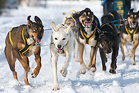 "Sled dogs tug their musher at the beginning of the Alpine leg of the International Pedigree Stage Stop Sled Dog Race. Blayne ""Buddy"" Streeper won the event with an overall time of 19:52:42"