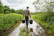 Jay Robinson carries buckets of fertilizer at Sweetland Farm in Starks, ME.  Jay has been producing food for Good Shepherd Food Bank since the beginning of the Mainers Feeding Mainers program.