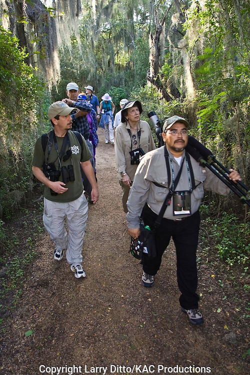 Birding guide, Roy Rodriguez (with tripd and spotting scope), leading an eager group of birders during the Rio Grande Valley Birding Festival.  The trail hung with Spanish moss is on the Santa Ana National Wildlife Refuge near Alamo, Texas on the Rio Grande.