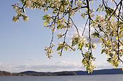 Hudson River, Croton-on-Hudson New York