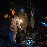 Honey hunters using head lamps to walk heading to Tualang tree, located at inner part of the forest. Climbing the Tualang tree and harvesting honey are done during night, when the giant honey bee are calmer and more docile.