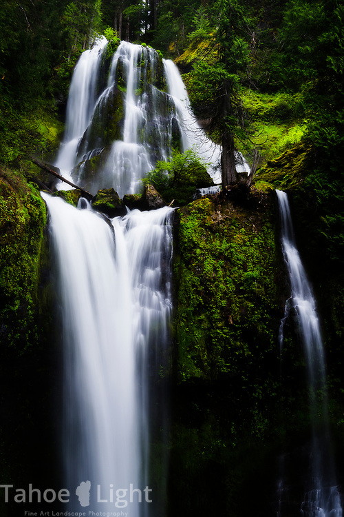 Fall Creek Falls in Washington. This is a popular and easy waterfall hike. The lush greenery and waterfalls of the Pacific Northwest are a must visit.