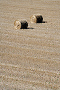 field with two straw bales