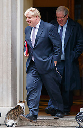 © Licensed to London News Pictures. 10/01/2017. London, UK. Foreign Secretary BORIS JOHNSON and Chairman of the Conservative Party PATRICK MCLOUGHLIN attend a cabinet meeting whilst Larry the Downing Street Cat going inside in Downing Street on Tuesday, 10 January 2017. Photo credit: Tolga Akmen/LNP