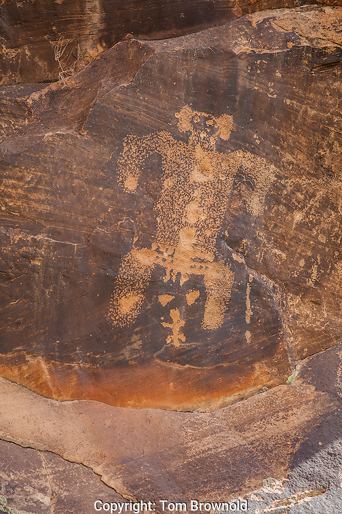 Petroglyph panels along Chevlon creek at the Rock Art Ranch