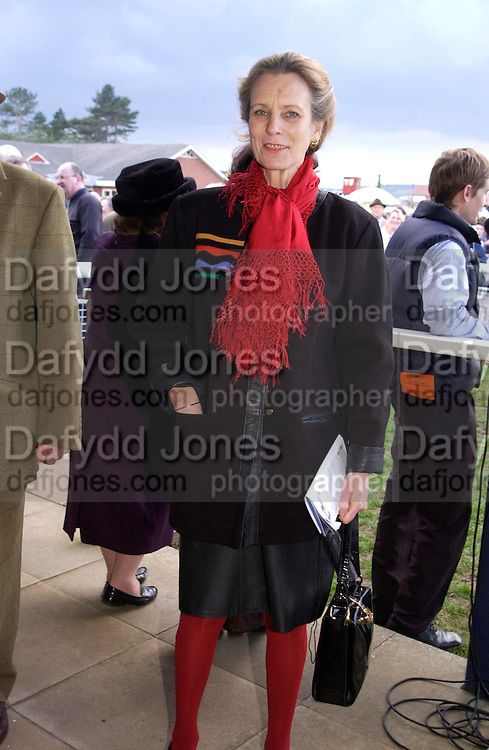 Lady Linithglow. Ludlow Charity Race Day,  in aid of Action Medical Research. Ludlow racecourse. 24 march 2005. ONE TIME USE ONLY - DO NOT ARCHIVE  © Copyright Photograph by Dafydd Jones 66 Stockwell Park Rd. London SW9 0DA Tel 020 7733 0108 www.dafjones.com