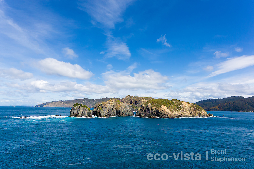 West Head is situated at the entrance into the very scenic Tory Channel in the Marlborough Sounds and is very rugged and exposed to the open ocean. This is the entrance the Cook Strait Ferries use when heading from Wellington to Picton. Tory Channel, Marlborough Sounds, New Zealand. September.
