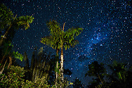 South America, Peru, Amazonia,South Manu National Park ,night sky, UNESCO World Heritage