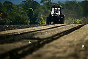 Tractor Ploughing Field, preparing to plant lettuce, Rural Australia