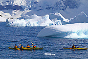 Kayaks in the sea around icebergs off Cuverville Island, Antarctica