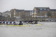 Putney, GREAT BRITAIN,    Bull on the Surrey station as both crews clash blades s approach Chiswick Pier, during the 2008 Varsity/Oxford University [OUBC] Trial Eights, raced over the championship course. Putney to Mortlake, on the River Thames. Thurs. 11.08.2008 [Mandatory Credit, Peter Spurrier/Intersport-images].Crews - .Bull, Bow. Colin KEOGH, 2. Douglas BRUCE, 3.Michal PLOTOWIAK, 4. David HOPPER, 5. Aaron MARCOVY, 6. Ben HARRISON, 7. Sjoerd HAMBURGER, Stroke Colin SMITH and Cox Philip CLAUSEN-THUE...Bear, Bow. Tim FARQUHARSON, 2. Ben ROSENBERGER, 3. Mike VALLI. 4. Alex HEARNE, 6 Tom SOLESBURY, 7 George BRIDGEWATER, Stroke, Ante KUSURI and Cox Adam BARHAMAND. Varsity Boat Race, Rowing Course: River Thames, Championship course, Putney to Mortlake 4.25 Miles,