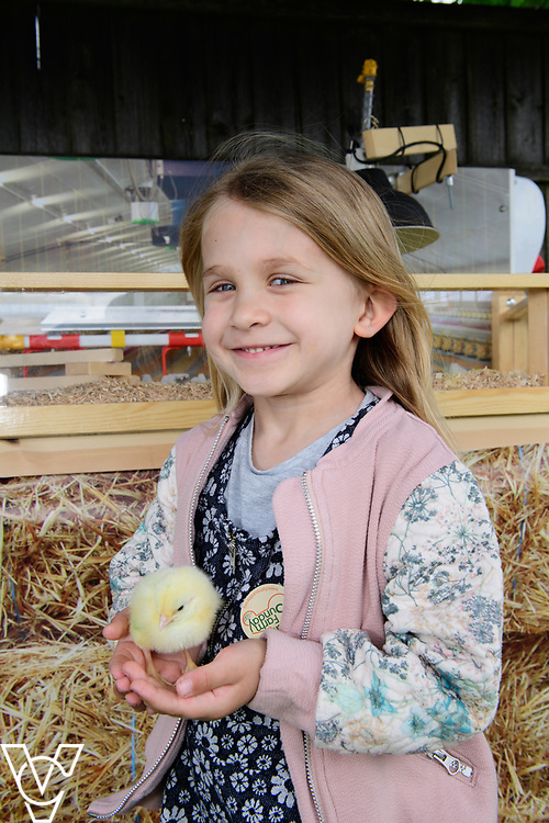 As part of Open Farm Sunday, May Park's Barr Farm in Billinghay, Lincolnshire, was open to the public.  Pictured is Amelia Hodson (five).<br /> <br /> PIcture: Chris Vaughan Photography<br /> Date: May 21, 2017