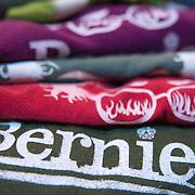 Bernie Sanders Concert_HGH
