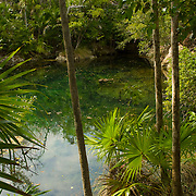Xel-Há also offers a thorough program catering to those with a deeper passion for sea life called Snuba which combines elements of snorkeling and scuba diving to deliver a complete aquatic exploration experience never to be forgotten. Though Xel-Há's inlet is its most obvious aquatic attraction, its vast network of cenotes and underground waterways are a truly unique experience that take visitors through a immense labyrinth of subterranean bodies of water thousands of years in the making.