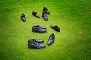 Many pairs of men's dress shoes on green grass.