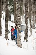 Nulhegan Abenaki boys maple sugaring in Barton, Vermont.