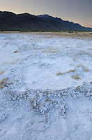 Mineral desposits on dry lakebed, Steens Mountain in the distance, Alvord Desert Oregon