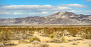 Desert Mountain Landscapes from California