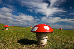 Water pumping system, painted to look like a mushroom field, on top of Mount Victoria, Devonport district, Auckland, New Zealand