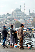 Istanbul, Turkey, 2015–11-16.