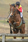 Cheshire Point to Point 2018