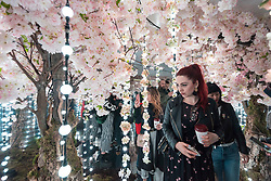 "© Licensed to London News Pictures. 07/04/2018. LONDON, UK. Visitors walk through a room called The Infinity Garden, created by floral design studio Early Hours, which conveys a never-ending, abstract meadow of blossom trees inspired by the season of Hanami, the Japanese custom of flower viewing. The room forms part of ""Sense of Space"", a four-room art pop-up which has opened to the public in Broadgate to challenge the visitor's sensory perceptions through art, the installation is open until 18 May.  Photo credit: Stephen Chung/LNP"