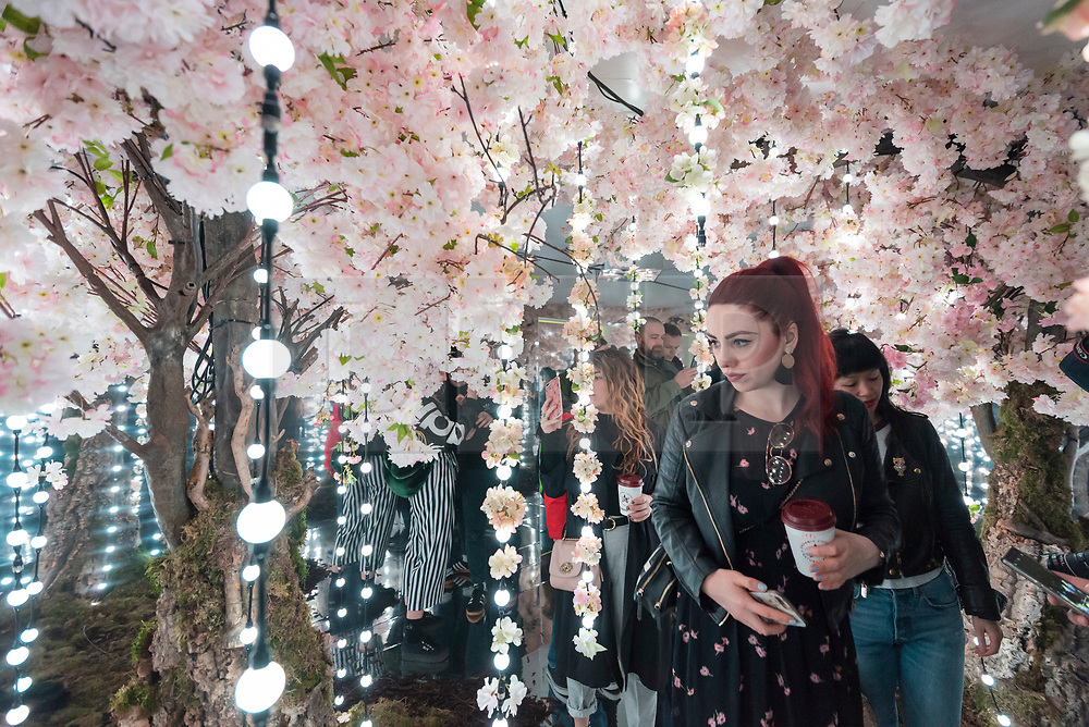 """© Licensed to London News Pictures. 07/04/2018. LONDON, UK. Visitors walk through a room called The Infinity Garden, created by floral design studio Early Hours, which conveys a never-ending, abstract meadow of blossom trees inspired by the season of Hanami, the Japanese custom of flower viewing. The room forms part of """"Sense of Space"""", a four-room art pop-up which has opened to the public in Broadgate to challenge the visitor's sensory perceptions through art, the installation is open until 18 May.  Photo credit: Stephen Chung/LNP"""
