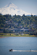 A water skier in the Columbia river with Mt Hood and Hood River, Oregon in the background.