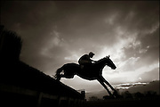 The last meeting at Folkestone Racecourse, Westenhanger, Kent, 18th December 2012..Witch's Hat riden by Mark Grant clears a jump in the BetVictor Cheltenham Festival Antepost Pioneers Novices' Handicap Steeple Chase.