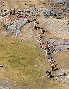 Donkeys carry trekkers loads down the trail. Day 8 of 9 days trekking around the Cordillera Huayhuash in the Andes Mountains, LLamac, Peru, South America.