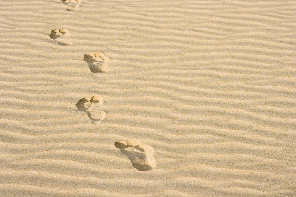 Human footprints on a clean, sandy beach, Palawan, Philippines