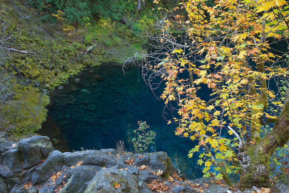 Tamolitch or Blue Pool, where the McKenzie River emerges from beneath a lava flow in Central Oregon