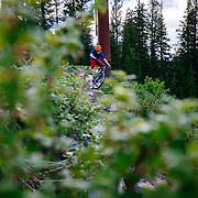 Andrew Whiteford descends through the power lines on the Philips Ridge Trail Teton County, Wyoming.