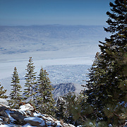 Took the tram in Palm Springs, CA up to San Jacinto Peak where this photo was taken.