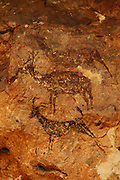 Wild goat and deer, prehistoric rock painting, c. 8000 - 6000 BC, at the Cuevas de la Arana, Bicorp, Valencia, Spain. The Cuevas de la Arana are listed as a UNESCO World Heritage Site, the Rock art of the Iberian Mediterranean Basin. Picture by Manuel Cohen