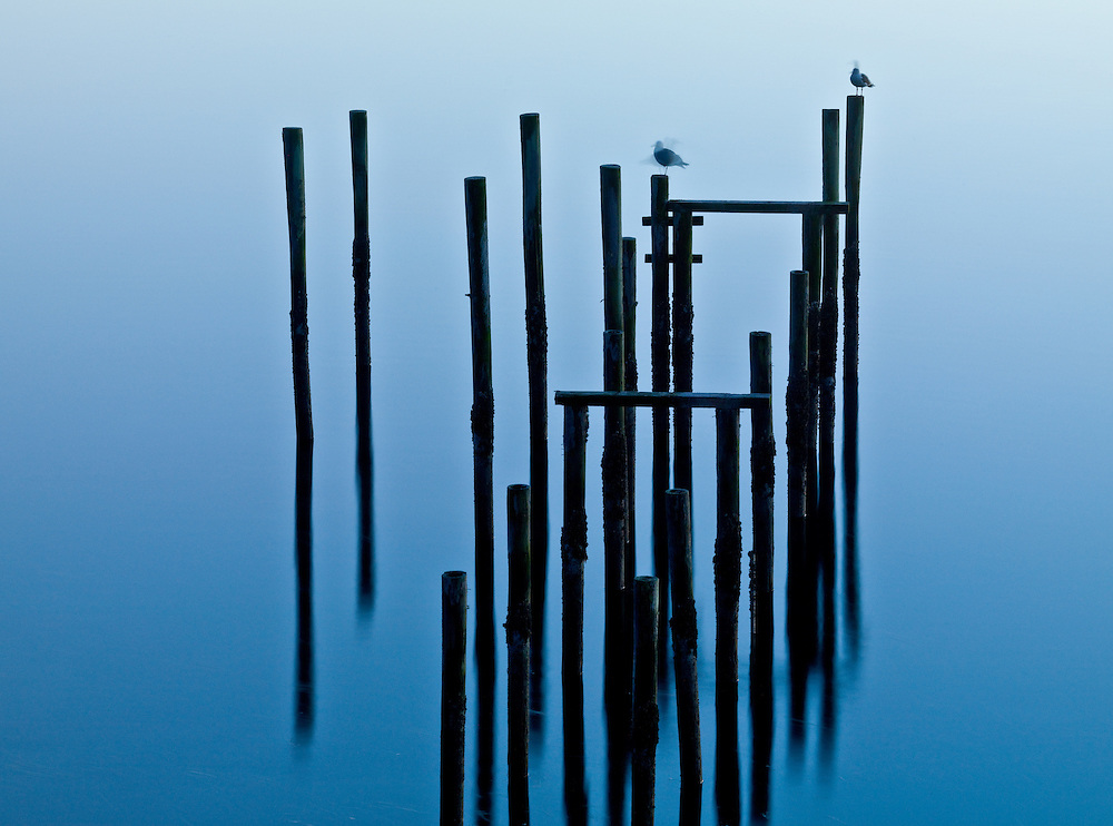 Limited Editions of 25<br />