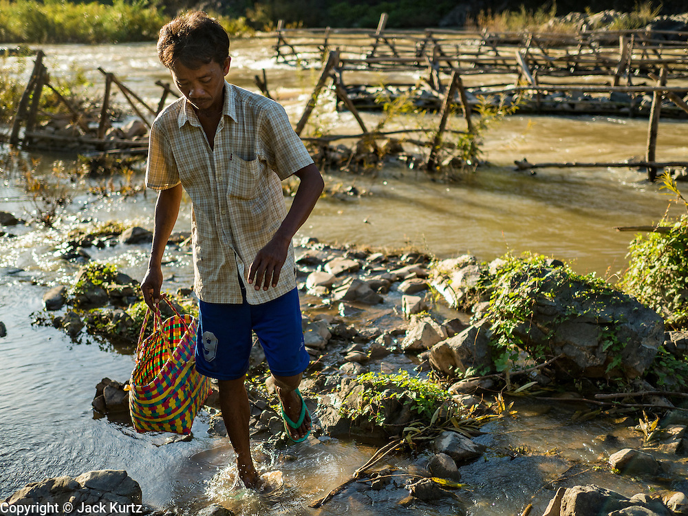 19 JUNE 2016 - DON KHONE, CHAMPASAK, LAOS: A fisherman walks back to shore with his catch at Khon Pa Soi Waterfalls, on the east side of Don Khon. It's the smaller of the two waterfalls in Don Khon. Fishermen have constructed an elaborate system of rope bridges over the falls they use to get to the fish traps they set. Fishermen in the area are contending with lower yields and smaller fish, threatening their way of life. The Mekong River is one of the most biodiverse and productive rivers on Earth. It is a global hotspot for freshwater fishes: over 1,000 species have been recorded there, second only to the Amazon. The Mekong River is also the most productive inland fishery in the world. The total harvest of fish from the Mekong is approximately 2.5 million metric tons per year. By some estimates the harvest in the Tonle Sap (in Cambodia) had doubled from 1940 to 1995, but the number of people fishing the in the lake has quadrupled, so the harvest per person is cut in half. There is evidence of over fishing in the Mekong - populations of large fish have shrunk and fishermen are bringing in smaller and smaller fish.     PHOTO BY JACK KURTZ