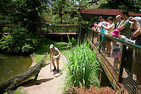 The daily crocodile show at the Cairns Tropical Zoo enthralls visitors to far north Queensland