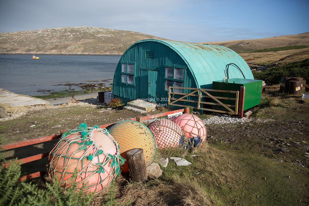 West Point Island, Falkland Islands, Great Britain