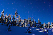 The constellation, Orion, climbs into the winter sky over Trooper Ridge of the Mount Tahoma Trails cross country ski and snowshoe hut to hut trail system with the snow covered forest backlit by the light of the full moon - Cascade Mountain Range of Washington state, USA