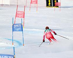 14.02.2013, Reiteralm, Pichl-Preunegg, Schladming, AUT, FIS Weltmeisterschaften Ski Alpin, Qualifikation Riesenslalom,  Herren, 1. Durchgang, im Bild Jean-Pierre Roy (HAI) // Jean-Pierre Roy of Haiti in action during 1st run of mens Giant Slalom Qualification Race at the FIS Ski World Championships 2013 at the Reiteralm Course, Pichl-Preunegg, Schladming, Austria on 2013/02/14. EXPA Pictures © 2013, PhotoCredit: EXPA/ Martin Huber