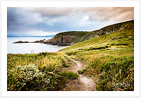 View from path at Cape Bruny, overlooking Quiet Bay [Bruny Island, Tasmania]<br /> <br /> To purchase please email orders@girtbyseaphotography.com quoting the image number PB207211, and your preferred print size. You will receive a quick reply recommending print media options to best suit your chosen image, plus an obligation-free quotation. Current standard size prices are published on the Pricing page.