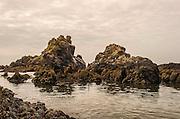 Oregon Coast Sea Mounts