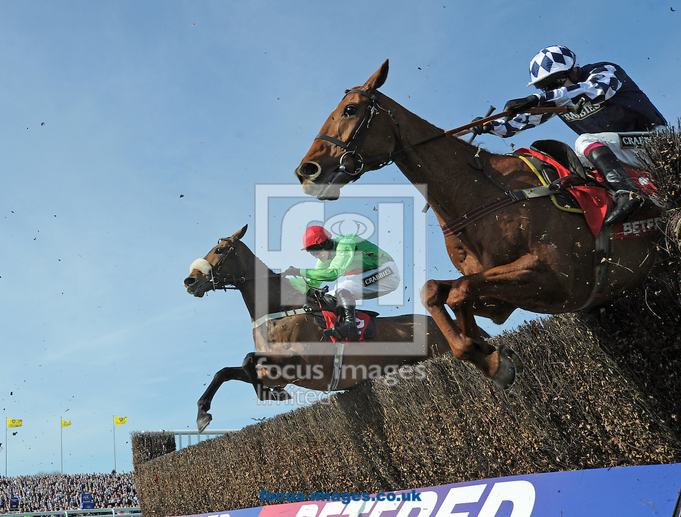 A preview of this weekend's favourites in UK Racing.<br /> Picture by Martin Lynch/Focus Images Ltd 07501333150<br /> 09/12/2016<br /> <br /> Original caption:<br /> Left is BUYWISE right is EDGARDO SOL at Aintree 11-4-15.
