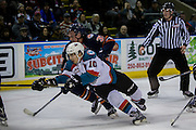 KELOWNA, CANADA - DECEMBER 27:  Nick Merkley #10 of the Kelowna Rockets and Joe Gatenby #37 of the Kamloops Blazers at the Kelowna Rockets game on December 27, 2016 at Prospera Place in Kelowna, British Columbia, Canada.  (Photo By Cindy Rogers/Nyasa Photography,  *** Local Caption ***