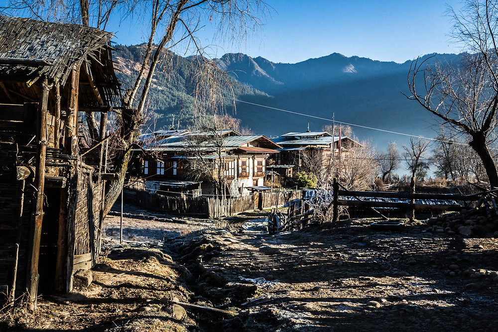 A local farm on a cold morning in Bhumtang, Bhutan
